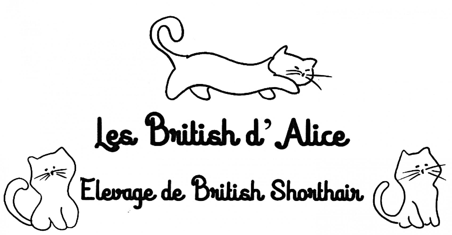 Logo les british